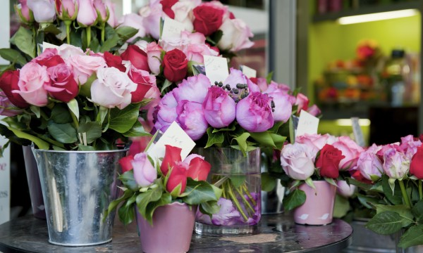 The Hacks for Finding the Best Florist